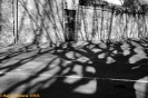 Douce France - slodka Francja - wystawa fotografii_48